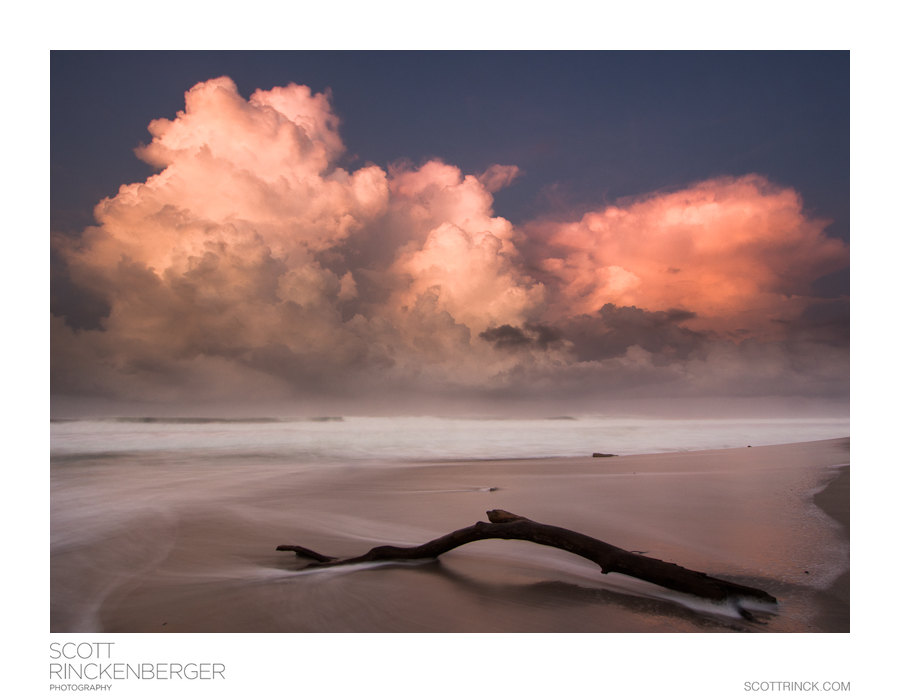 Pink Sunsrise and Driftwood