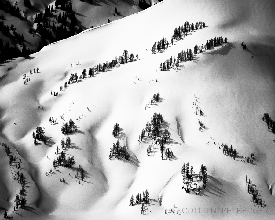 March-textures-snow-and-trees-buck-mountain-glacier-peak-wilderness-washington-cascades