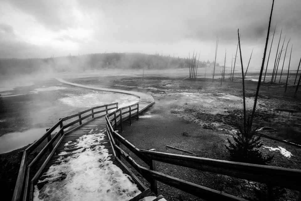 Pathway in Norris Geyser Basin, Wyoming